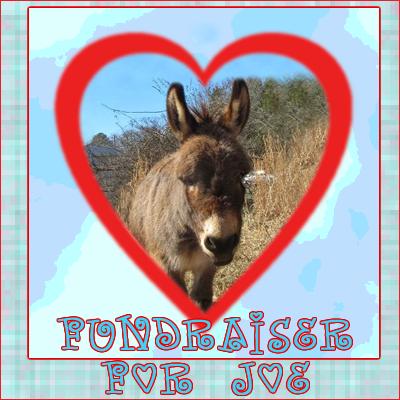Fundraiser for Joe the Donkey