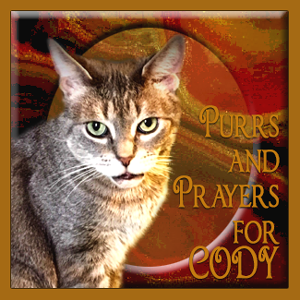 Purrs & Prayers Request for Cody